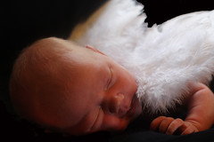 Newborn Angel (Melly.M.C) Tags: baby white angel wings innocent adorable newborn