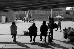The Gang (slamb3e) Tags: city shadow people blackandwhite bw toronto monochrome photography nikon strangers nathanphillipsquare bnw cpntrast