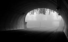 Somain tunnel (april-mo) Tags: autumn blackandwhite mist france misty automne brouillard nord brume franceimage blackandwhitepicture somain