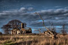 Old School House (Nigel Jones QGPP) Tags: school sky tree history abandoned overgrown grass dead ruin fallen deserted deadwood elmley