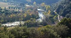 Contre-jour sur l'Orb (brigeham34) Tags: automne rando vignes ceps contrejour dcembre languedocroussillon hrault lorb circuitdelayrolle