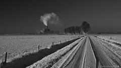nieuwgraaf (Harm Klaverdijk) Tags: winter snow landscape sneeuw 2012 landschap duiven avr harmklaverdijk