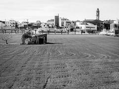 DSCF9796 (Josep M Mart) Tags: bw del la catalonia bin catalunya blanc negre bisbal peneds