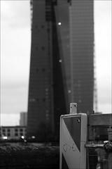 love is bigger than the euro (loop_oh) Tags: tower love germany deutschland hessen heart euro frankfurt main bank herz liebe frankfurtammain frankfurtmain roemer ecb metropole hochhaus rmer hesse markthalle mainhattan ezb eintracht europeancentralbank europischezentralbank frankfurtam grosmarkthalle