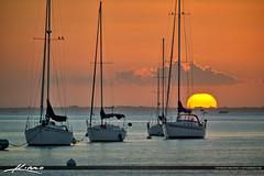 Sailboat Sunset at Biscayne Bay Crandon Park Marina (Captain Kimo) Tags: sunset sailboat boat florida anchor keybiscayne biscaynebay photomatixpro hdrphotography miamidadecounty crandonparkmarina captainkimo