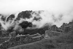 Machu Picchu in mono (stopdead2012) Tags: mist peru ruins machupicchu