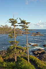 Ucluelet, BC - View from the Black Rock Resort (Freshairphotography) Tags: ocean blue trees light sunlight canada tree tourism beach nature colors beautiful beauty clouds forest canon island evening coast amazing interesting rainforest rocks bc view natural pacific hiking path relaxing trails peaceful sealife tourist hike vancouverisland trail pacificocean views windswept greens tofino serene westcoast tidal ucluelet nationalgeographic crashingwaves rockformation oceanspray oldgrowthforest beautifulbc blackrockresort explorebc canon7d explorecanada ilovebc explorevancouverisland