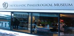 Seriously Smirky (SchwanSongs) Tags: iceland reykjavik penis phallus museum schwansongs