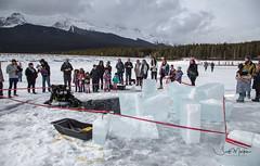 IMG_4701 (Scott Martin Calgary) Tags: improvementdistrictno9 alberta canada ca lakeminnewanka scuba diving mountains ice iceblocks