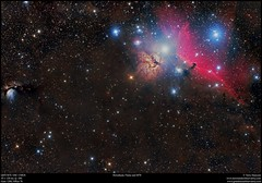 Horsehead, Flame and M78 (Terry Hancock www.downunderobservatory.com) Tags: qhy367c orion astrophotography astroimaging sky universe cosmos