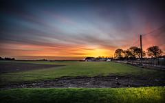 Sunrise on Clayholes (daedmike) Tags: scotland carnoustie tayside clayholes farm field sunrise colours clouds streaks morning dawn agroculture crops