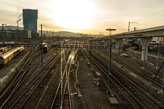 The golden switch (jaeschol) Tags: durchmesserlinie eisenbahn eisenbahnprojekte europa europabrücke kantonzürich kontinent schweiz stadtzürich suisse switzerland transport chemindefer railroad railway zürich ch
