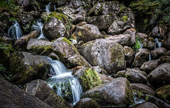 Stones vs. silk (Anthony P26) Tags: beckyfalls category dartmoor devon england places travel waterfall longexposure britain english british greatbritain uk unitedkingdom stones rocks boulders river stream water silkwater moss lichen canon1585mm canon70d canon