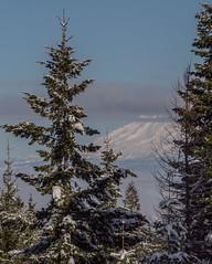 mt adams from afar (dolanh) Tags: winter snow mthood mtadams cooperspur cooperspurmountainresort