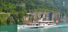 ©DSC_7647 (saurerdeutschland/Hose.Photography) Tags: summer lake water schweiz switzerland see nikon cross swiss sommer brunnen steam steamship lucerne lucern gallia 2013 vierwaldstädtersee d7000 dx1755mm achsenstrasse saurerdeutschland