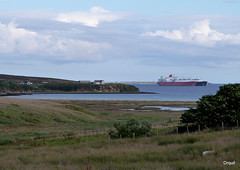 Ship-to-Ship Crossload In Scapa Flow (orquil) Tags: uk summer bay scotland orkney august gas lng excel tankers sts scapaflow orphir orcades waulkmill shiptoship crossload benbedis