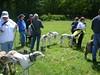 GreatBrookFarmMay92010025-1