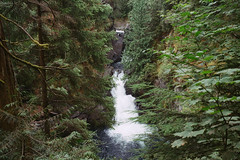 (chooseanalog) Tags: summer film 35mm washington northwest kodak trail northbend nikonfm