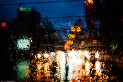Color of rain 2 (Arthur Gerhardt) Tags: nikon d800 1635