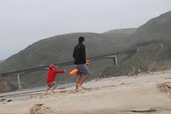 DSC_0018 (rlnv) Tags: california walter beach bayarea centralcoast californiastateparks sangregoriostatebeach 1855mmf3556gii nikond40x noejr