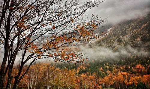 In the White Mountains at Crawford Notch, NH