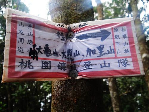 向天湖光天高山 (88).jpg