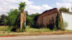 SX10-IMG_12167 (old.curmudgeon) Tags: brick wall texas urbandecay 5050cy canonsx10is