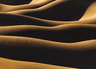 DVNP Dune Layers