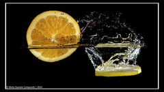 "Synchronized diving <a style=""margin-left:10px; font-size:0.8em;"" href=""http://www.flickr.com/photos/66444177@N04/11693262273/"" target=""_blank"">@flickr</a>"