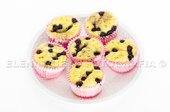 blackberry muffins (Elenita_) Tags: red food cake fruit pie dessert muffins healthy berry cookie candy fresh gourmet blueberry biscuit bakery snack pastry sweets raspberry organic piece tart bake blackberries redcurrant blueberrycake blackberrycake