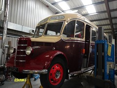 Tantivy OB (Coco the Jerzee Busman) Tags: uk bus ford islands coach pointer transit cannon jersey swift channel platoon leyland stringer wadham lcb tantivy