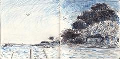 Near Antibes (Martin Beek) Tags: sketchbook drawing art study line 20122016 notebook notes 201216 nature