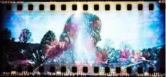 Sprocket Rocket (DWO630) Tags: film lomo kodak doubleexposure lewisginter portra400 sprocketrocket