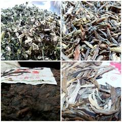 crazy tea taste  (Tetere Barcelona) Tags: tea te chayi cha chinesetea  puerhtea tealeaf puer   chaye  teaart flickrandroidapp:filter=none