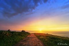 Path to the sea (Mimadeo) Tags: park sunset sea sun clouds sunrise landscape coast outdoor path nobody trail footpath bizkaia euskadi pathway vizcaya basquecountry paisvasco getxo pavingstones