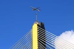 weather vane!  Turkish Airlines B777-300ER TC-LJA approaching HKG/VHHH (Jaws300) Tags: new bridge island airport hong kong international boeing approach airlines runway hkg turkish territories yi ils tk tsing ting kau cheklapkok b777 hkia tsingyi tingkau b773 vhhh b777300er 25r tclja b77700 ils25r