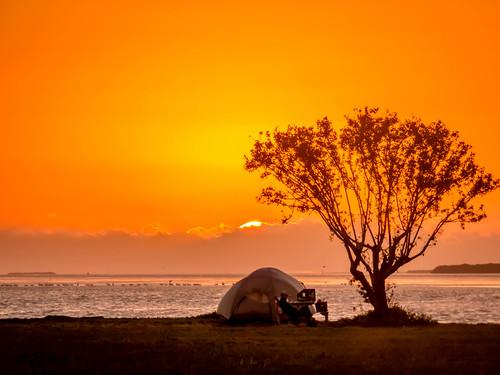 Florida Bay Sunrise at Flamingo, Everglades NP