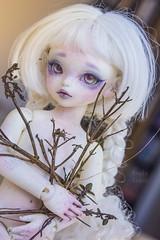 """シュラウド """"Midnight Ghost"""" (Koala Krash) Tags: bjd balljointeddoll ball joint jointed doll peakswood huky koalakrash koala krash white ghost fantom phantom pure morbid romantic girl"""