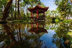 大東濕地公園 (hosihane) Tags: 台灣 高雄市鳳山區 公園 濕地 大東 涼亭 倒影 綠地 河 樹 sony a77