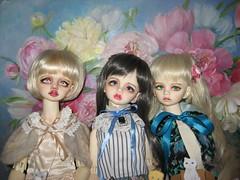 IMG_9527 (IIRRIIshka) Tags: dim doll bellosse dimbellosse