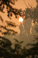 Humo de incendios en Bucalemu