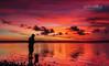 "He ""Caught"" the Sunset (Beth Wode Photography) Tags: sunset sundown dusk twilight spectacularsunset wellingtonpoint redlads silhouette fisherman fishing silhouettefisherman reflections pinkandorangesky beth wode bethwode"