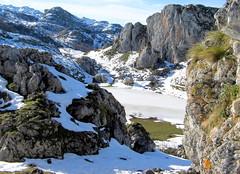 Lago Ercina, Picos de Europa, Asturias, España. (PGARCIA.) Tags: lagoercina picosdeeuropa lagosdecovadongacangasdeonís covadonga onís montañas nieve lago naturaleza paisaje montañismo parquenacionaldelospicosdeeuropa verde senderismo