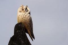 wooden owl (Wiktor Sobiecki) Tags: wooden owl park outdoor daylight light sony alpha alfa a6000 6000 ilce emount e mount sel50f18 50 mm 50mm f18 18 f lens prime sun sunny ray rays
