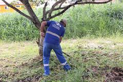 Esforço Concentrado Obras Praia  de Taquaras  20 03 17 Foto Celso Peixoto (8) (Copy) (prefbc) Tags: esforço concentrado praias amores taquaras limpeza