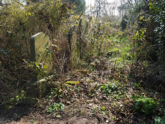 spring in the cemetery (Johnson Cameraface) Tags: 2017 march spring olympus omde1 em1 micro43 mzuiko 1240mm f28 johnsoncameraface yorkcemetery york yorkshire cemetery graves tomb headstone green nature wildlife