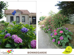 bonnegarde (Tourisme Landes) Tags: landes fleurs vvf