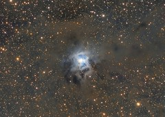 NGC 7023 - Iris Nebula (Collaboration) (John.R.Taylor (www.cloudedout.squarespace.com)) Tags: sky night stars jake space ngc nebula astrophotography cannon astronomy collaboration ed80 cs5 pixinsight Astrometrydotnet:status=solved atik314l Astrometrydotnet:version=14400 baaderlrgb tokoloshe81 Astrometrydotnet:id=alpha20130583911984