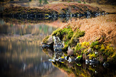Reflection (Kashmir09) Tags: reflection scotland moss rocks isleofmull bracken loch