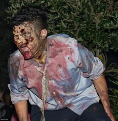 HHN 23 (mwjw) Tags: walter halloween walking dead orlando nikon mark horror nights universal zombies d600 hhn mwjw